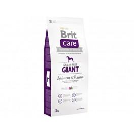 Brit Care Grain-free Giant Salmon & Potato maistas šunims su lašiša ir bulvėmis 12kg.
