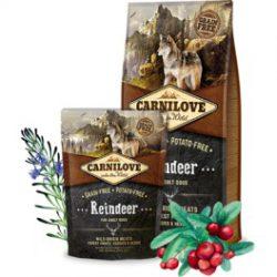 Carni Love Reindeer for Adult holistinis maistas šunims